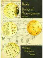 Biology of Microorganisms