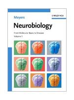 Neurobiology(From Molecular Basis to Disease )