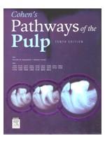 (한글판)Cohen's Pathways of the Pulp Expert Consult, 제10판
