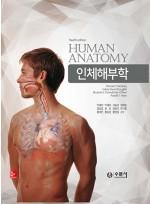 인체해부학-수문사