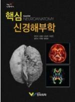 핵심신경해부학(Essential Neuroanatomy)