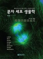 분자 세포 생물학 (6 판)